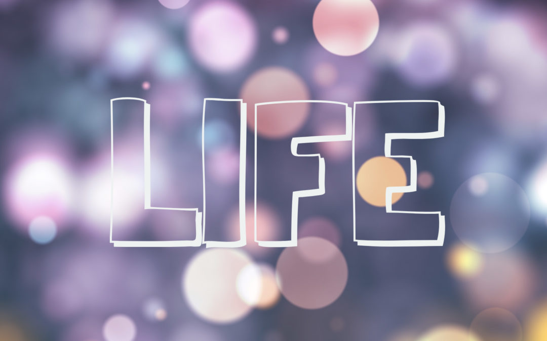 What is life to you?